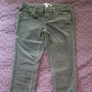 Grey Corduroy Skinny Jeans, Lauren Conrad